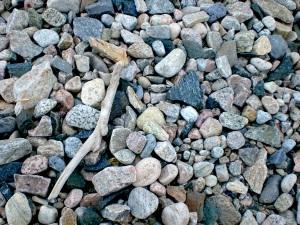 Steine und Treibholz
