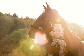 Autumn horse shooting