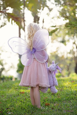 Fairy Shooting